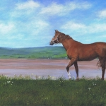 horsebythebaysmall